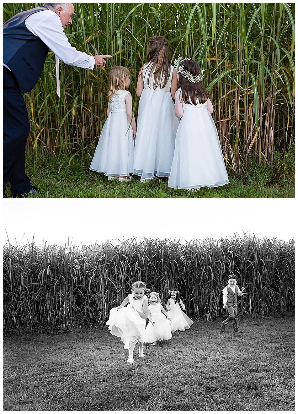 Summer wedding at Alrewas Hayes