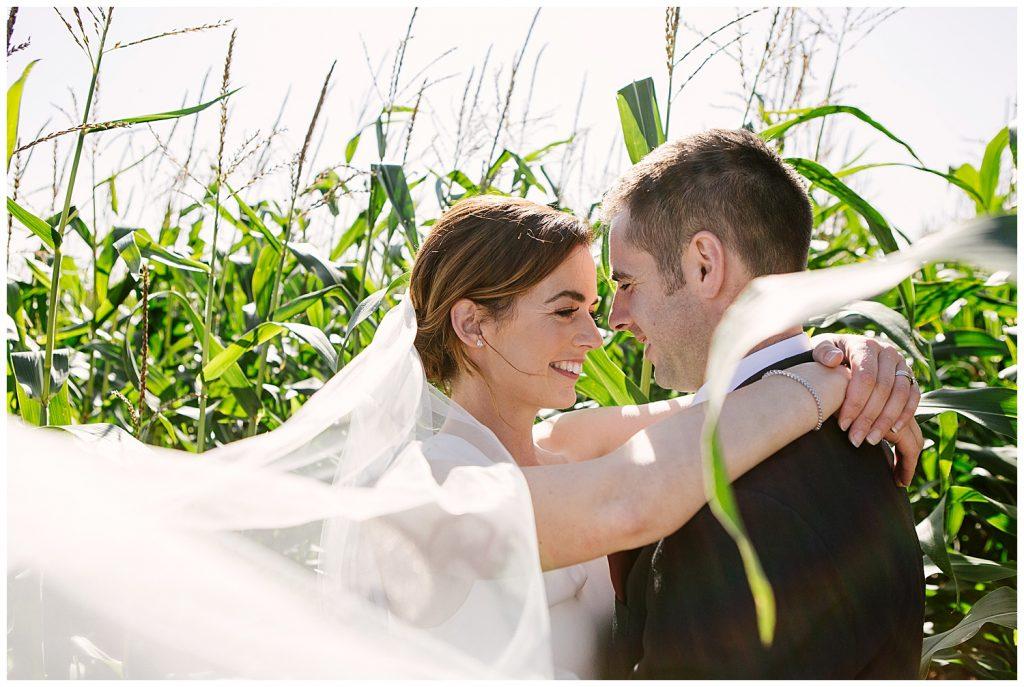 bride and groom in field of corn cobs