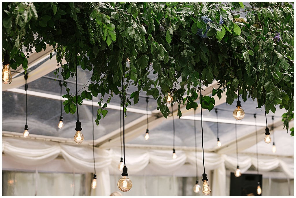 woodland marquee reception with hanging foliage and Eddison light bulbs